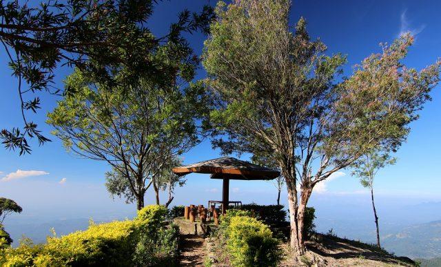 Le parc national de Yala