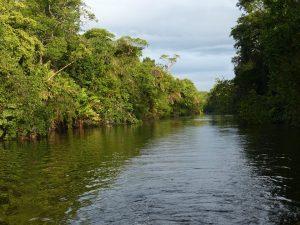 Vivre des moments mémorables lors d'un séjour au Costa Rica