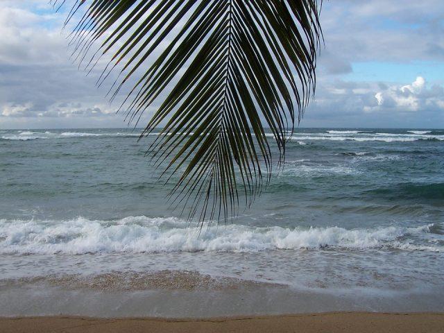 La Martinique : une destination incontournable pour les vacances